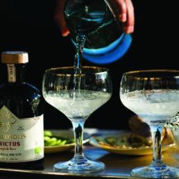 gin-maredsous