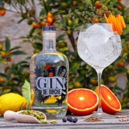 Gin-de-Binche